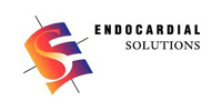 Endocardial Solutions
